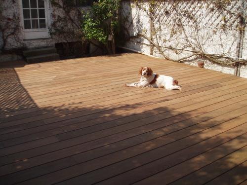 PHOTO 4 Terrasse finalisée Le principal concerné commence déjà